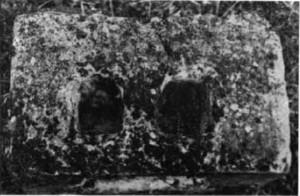 abasolo-1984